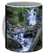 Mingo Falls Two Coffee Mug