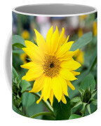 Mini Sunflower And Bud Coffee Mug