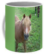 Miniature Horse Coffee Mug