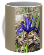 Miniature Iris Coffee Mug