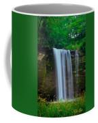 Minneopa Falls Coffee Mug
