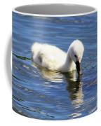 Mirrored Cygnet Coffee Mug