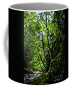 Missisquoi River In Vermont - 1 Coffee Mug