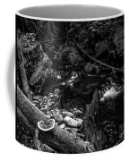 Missisquoi River In Vermont - 2 Bw Coffee Mug