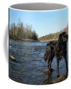 Mississippi River Dog On The Rocks Coffee Mug
