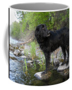 Mississippi River Posing Dog Coffee Mug