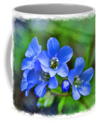 Missouri Wildflowers 5  - Polemonium Reptans -  Digital Paint 1 Coffee Mug