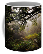 Misty Distance Coffee Mug