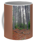 Misty Morning In An Algonquin Forest Coffee Mug