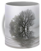 Misty Wetlands Coffee Mug