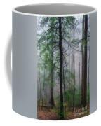 Misty Winter Forest Coffee Mug