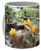 Mitrula Paludosa Coffee Mug