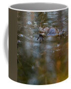 Mixed Frogs Hands Up Coffee Mug