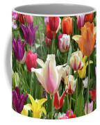 Mixed Tulips Coffee Mug