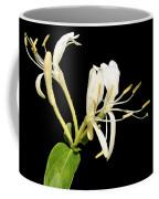 Mmmmm Honeysuckle Coffee Mug
