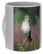 Mocking Coffee Mug
