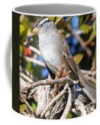 Mockingbird Finally Being Quite Coffee Mug