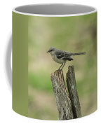 Perched On An Old Fence Coffee Mug