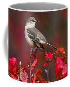 Mockingbird On Red Coffee Mug