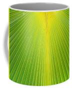 Molokai Palm Fan Coffee Mug