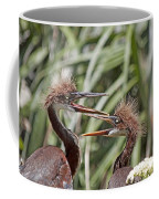 Mom Always Liked You Best Coffee Mug