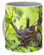 Moma Robin Incubating Coffee Mug