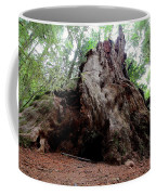 Moments In Time Trail Coffee Mug