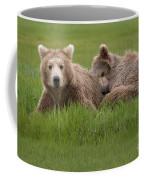 Momma And Cub Coffee Mug
