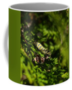 Monarch Caterpillar Coffee Mug