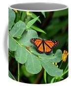 Monarch Butterfly Resting On Cassia Tree Leaf Coffee Mug