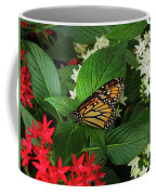 Monarch Framed Coffee Mug