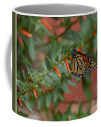 Monarch On Cigar Plant Coffee Mug