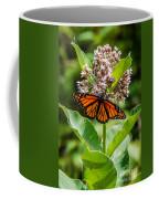 Monarch On Milk Weed Coffee Mug