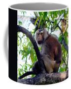 Monkey In Tree Coffee Mug