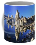 Mono Mirror Coffee Mug