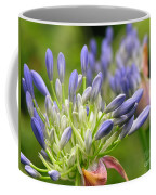 Montana Purple And Blue Coffee Mug