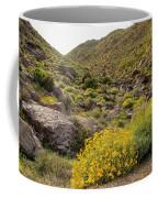Montezuma Rd Daisey Garden Coffee Mug