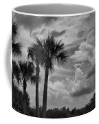 Moody Florida Sky Coffee Mug