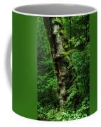Moody Tree In Forest Coffee Mug