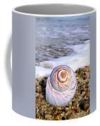 Moon Snail Coffee Mug