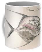 Moonfish, 1585 Coffee Mug
