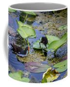 Moorhen N Baby 2 Coffee Mug