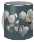 Moorpark Apricot B 4212 Coffee Mug
