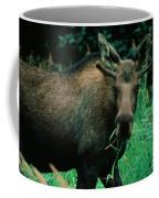 Moose At Lunch Coffee Mug