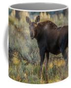 Moose Calf In Fall Colors Coffee Mug