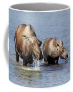 Moose Mama With Her Calf Coffee Mug