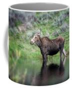 Moose Yellowstone Np_grk6918_05222018 Coffee Mug
