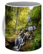 Morning At Amicalola Falls Coffee Mug