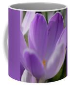 Morning Crocus One Coffee Mug