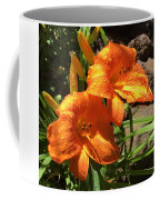 Morning Daylilies Coffee Mug